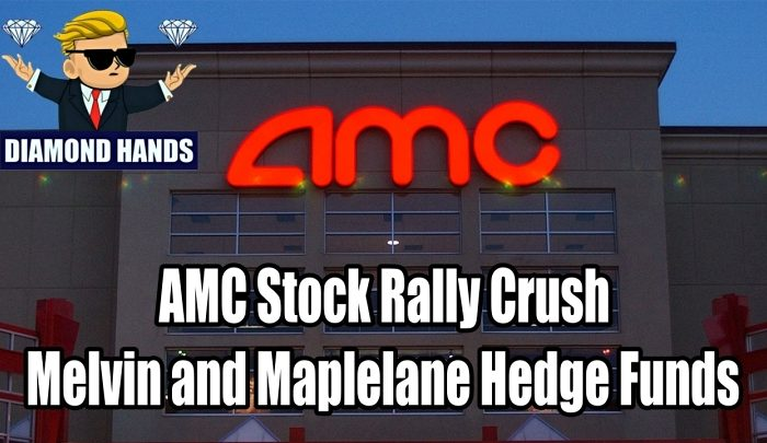 AMC Stock Rally Crush Melvin and Maplelane Hedge Funds